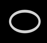Static Seal Moly-disulfide PTFE